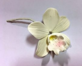 Orchidea kicsi - Fehér