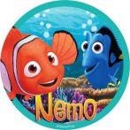 Torta ostya - Nemo 30.