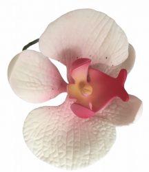 Orchidea - Fehér-pink