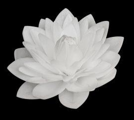 Ostya virág óriás - Dália 13cm